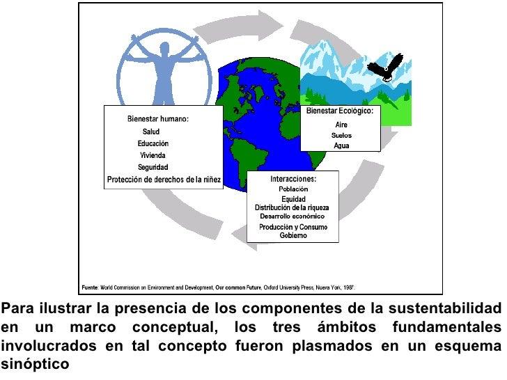 <ul><li>Para ilustrar la presencia de los componentes de la sustentabilidad en un marco conceptual, los tres ámbitos funda...