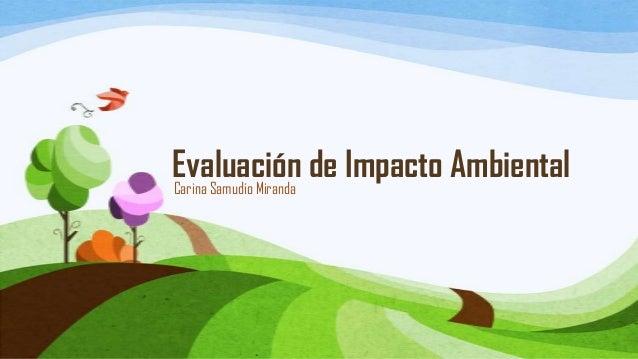 Evaluación de Impacto Ambiental Carina Samudio Miranda