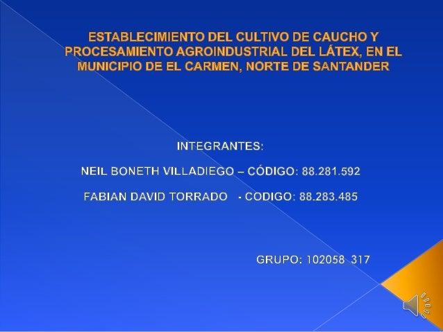 PLANTEAMIENTO DEL PROBLEMA:  FORMULACIÓN DEL PROBLEMA:  El sector agrícola del Municipio de El Carmen, tiene cada día meno...
