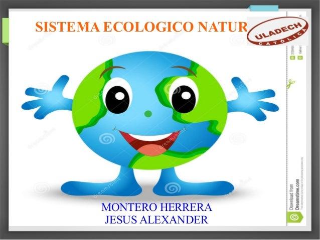 SISTEMA ECOLOGICO NATURAL MONTERO HERRERA JESUS ALEXANDER