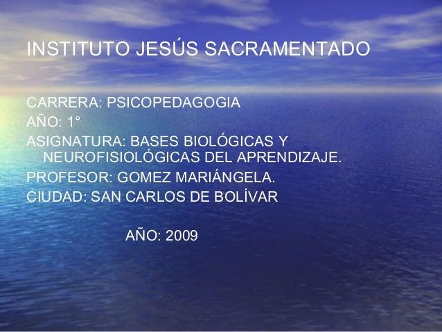 INSTITUTO JESÚS SACRAMENTADO CARRERA: PSICOPEDAGOGIA AÑO: 1° ASIGNATURA: BASES BIOLÓGICAS Y NEUROFISIOLÓGICAS DEL APRENDIZ...