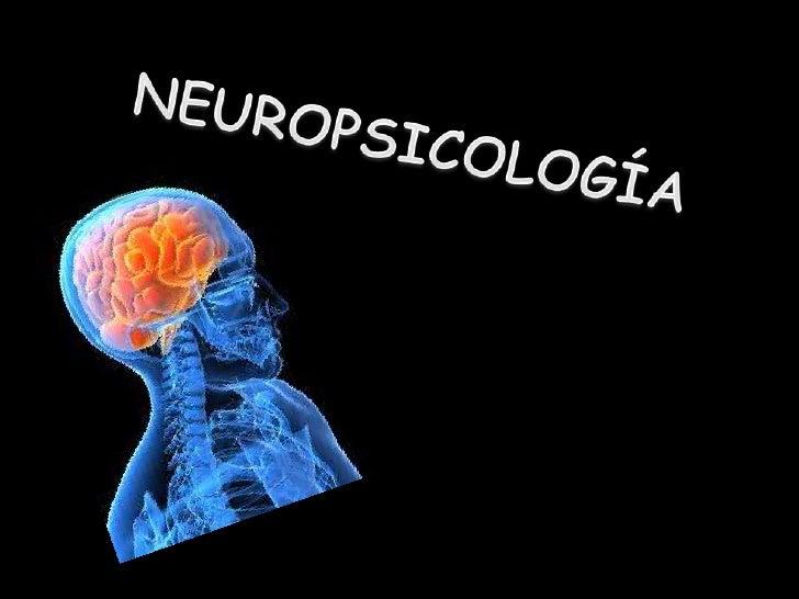 NEUROCIENCIA♪ Ámbito interdisciplinar que estudia diversos aspectos del  sistema nervioso: anatomía, funcionamiento, patol...