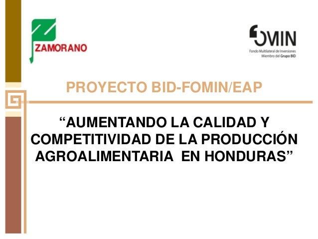 """PROYECTO BID-FOMIN/EAP """"AUMENTANDO LA CALIDAD Y COMPETITIVIDAD DE LA PRODUCCIÓN AGROALIMENTARIA EN HONDURAS"""""""