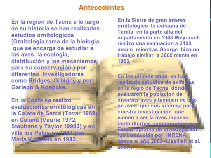 Antecedentes En la region de Tacna a lo largo de su historia se han realizados estudios ornitologicos (Ornitología rama de...