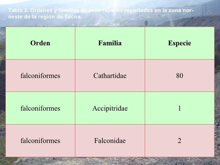 Tabla 2. Órdenes y familias de aves rapaces reportadas en la zona nor-oeste de la region de Tacna. 2 Falconidae falconifor...