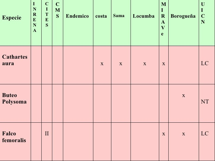 LC x x II Falco femoralis NT x Buteo Polysoma LC x x x x Cathartes aura U I C N Borogueña M I R A V e Locumba Sama costa E...