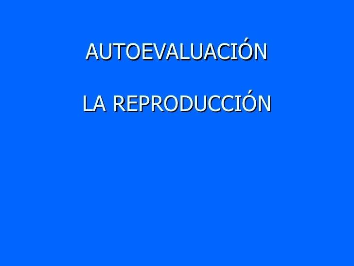 AUTOEVALUACIÓN LA REPRODUCCIÓN