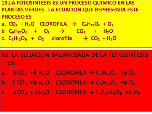 Ecuacion de la fotosintesis balanceada