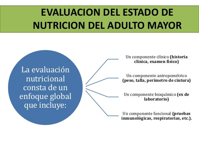 Estado nutricional del adulto mayor for Mediciones antropometricas pdf