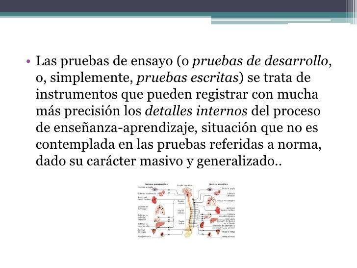 FORMATO DE PRUEBALa prueba escrita consta de dos partes: la parteadministrativa y la parte técnica.PARTE ADMINISTRATIVA   ...