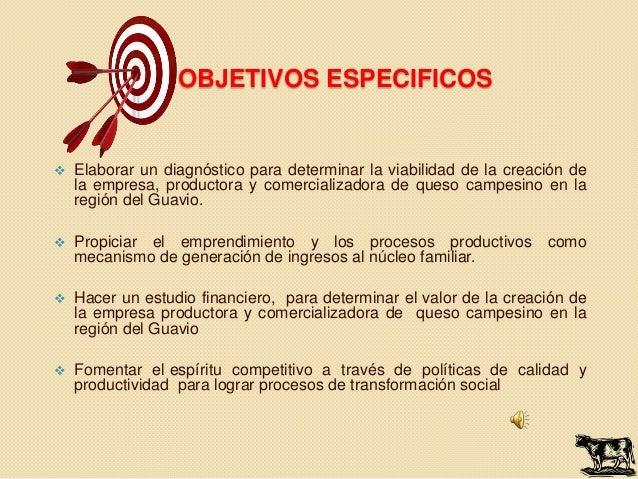 OBJETIVOS ESPECIFICOS   Elaborar un diagnóstico para determinar la viabilidad de la creación de    la empresa, productora...