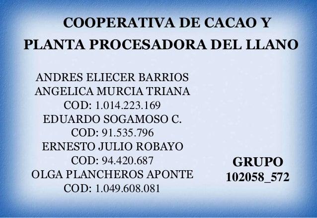 COOPERATIVA DE CACAO Y  PLANTA PROCESADORA DEL LLANO ANDRES ELIECER BARRIOS ANGELICA MURCIA TRIANA COD: 1.014.223.169 EDUA...
