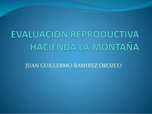 JUAN GUILLERMO RAMIREZ OROZCO