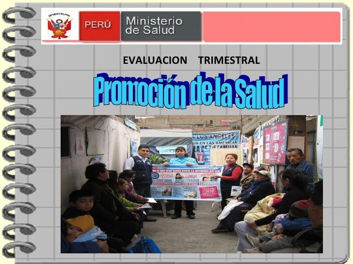 Promoción  de la Salud LIC.  FIGUEROA JARA, TERESA EVALUACION  TRIMESTRAL