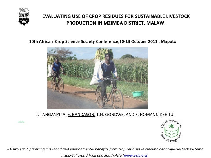 EVALUATING USE OF CROP RESIDUES FOR SUSTAINABLE LIVESTOCK PRODUCTION IN MZIMBA DISTRICT, MALAWI J. TANGANYIKA,  E. BANDASO...