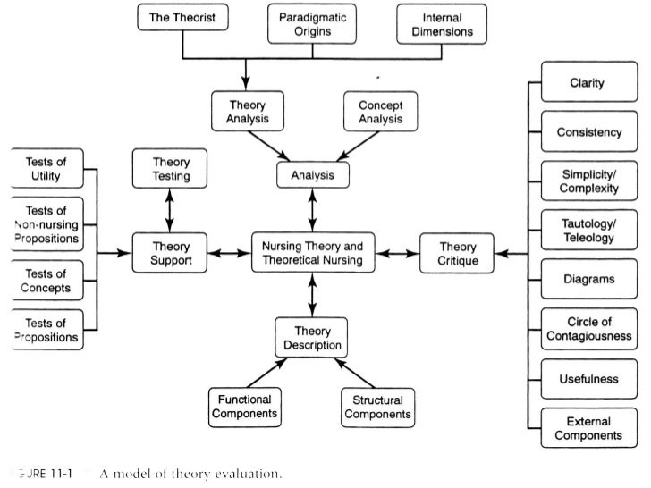 Theory applied to informatics – Novice to Expert