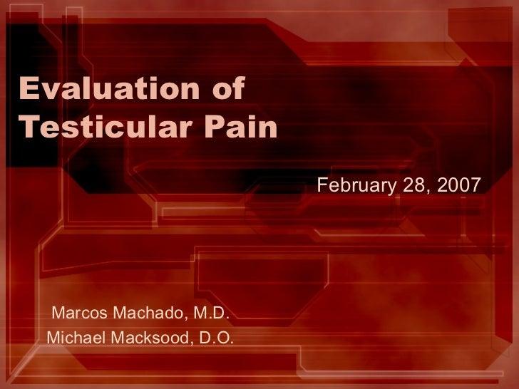 Evaluation of Testicular Pain Marcos Machado, M.D. Michael Macksood, D.O. February 28, 2007