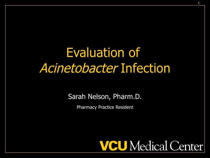 Evaluation of  Acinetobacter  Infection Sarah Nelson, Pharm.D. Pharmacy Practice Resident