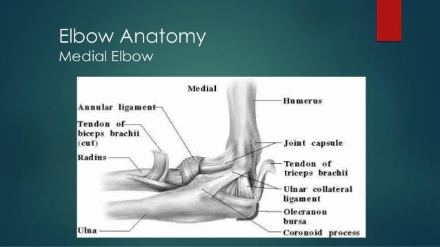 PS SESSION : ELBOW WRIST AND HAND EXAMINATION PART 1 Slide 2