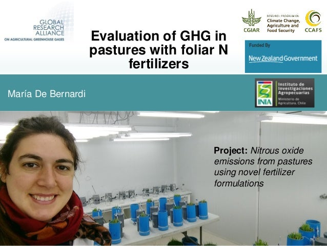 María De Bernardi Evaluation of GHG in pastures with foliar N fertilizers Project: Nitrous oxide emissions from pastures u...