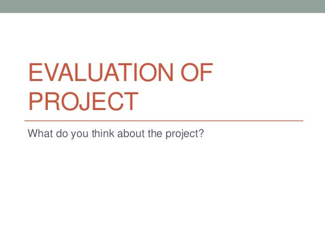 EVALUATION OF PROJECT What do you think about the project?