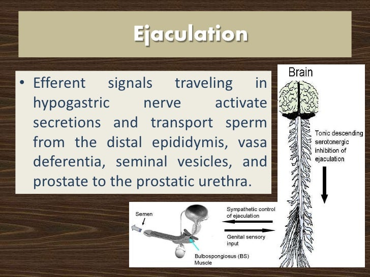 Sexual function and prostatectomy
