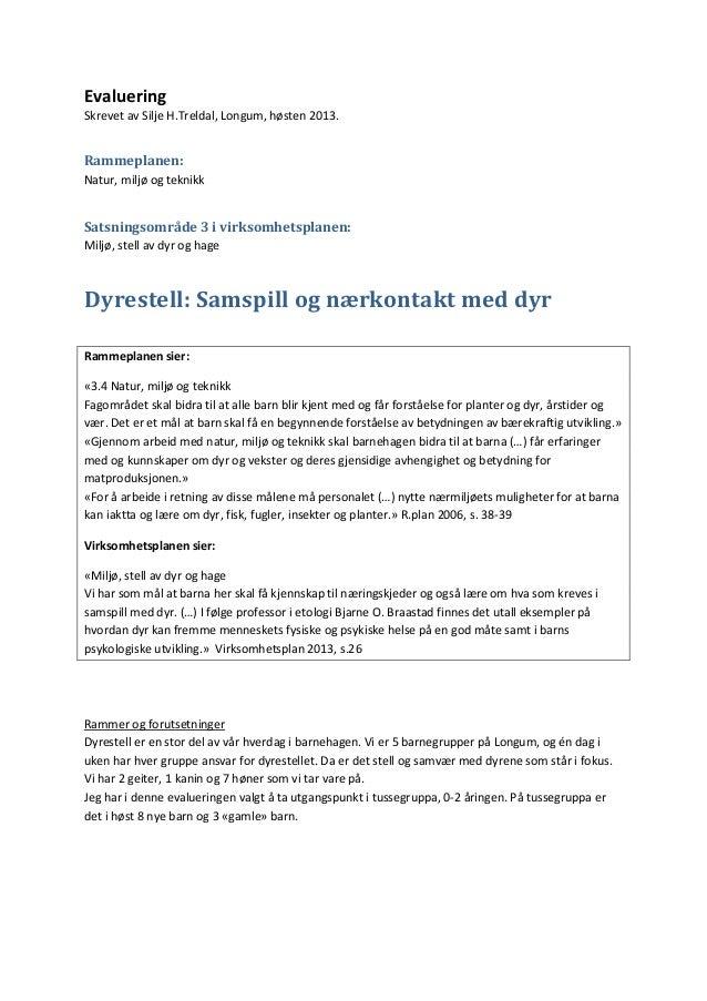 Evaluering Skrevet av Silje H.Treldal, Longum, høsten 2013.  Rammeplanen: Natur, miljø og teknikk  Satsningsområde 3 i vir...