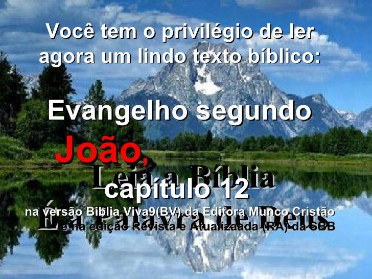 Evangelho segundo Joao 11
