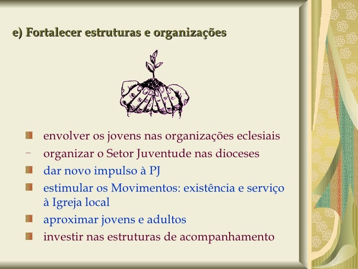 e) Fortalecer estruturas e organizações <ul><ul><li>envolver os jovens nas organizações eclesiais </li></ul></ul><ul><ul><...