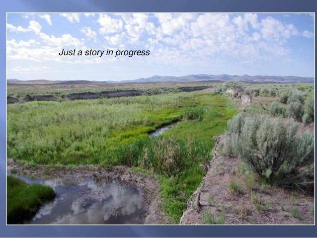 Susie Creek, 2015 Susie Basin