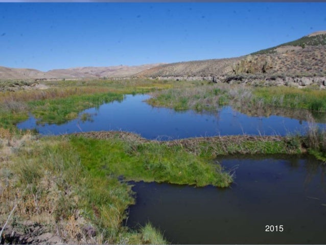"Carol Evans, ""Rehydrating Nevada"""