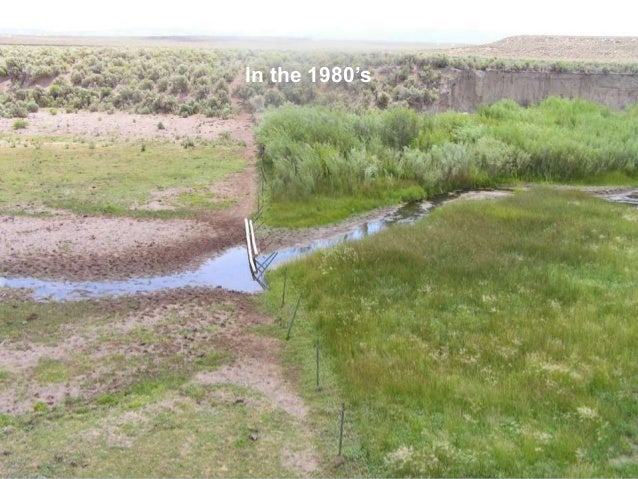 Successful livestock grazing strategies for streams in Northeastern Nevada Spring/fall/rest Spring annually Spring/rest Wi...
