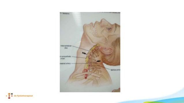 • EMLA + analgesie info • EMLA + weinig info • Placebo crème + analgesie info • Placebo crème + hyperalgesie info • EMLA +...