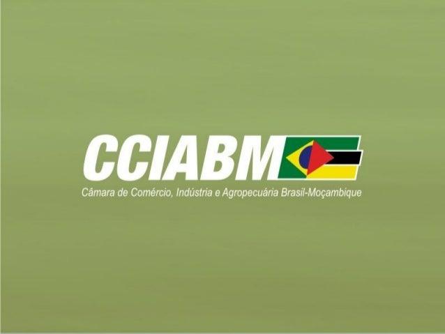 Missão Empresarial Brasil - Moçambique Realização: