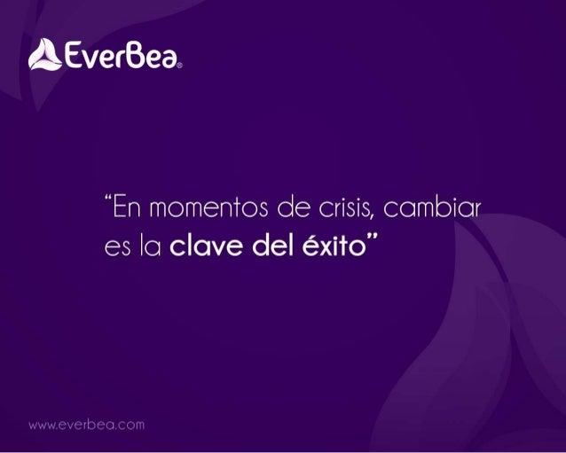 Presentación de Negocios Everbea - República Dominicana