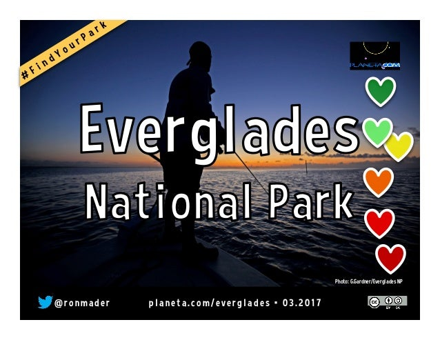 @ r o n m a d e r p l a n e t a . c o m / e v e r g l a d e s • 0 3 . 2 0 1 7 Photo: G.Gardner/Everglades NP