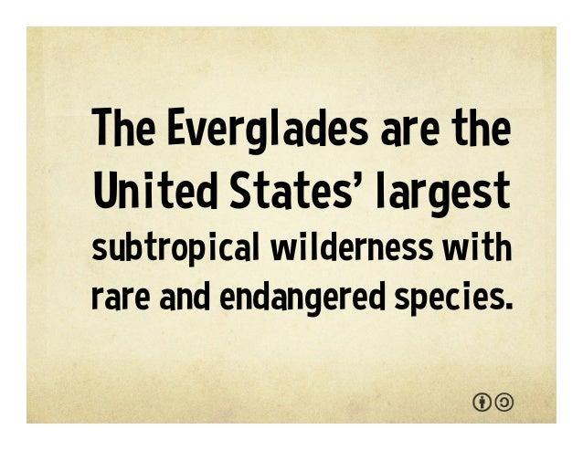 Everglades National Park  Slide 3