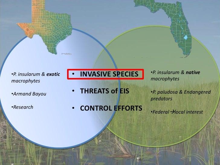 Everglades Presentation Final Slide 2