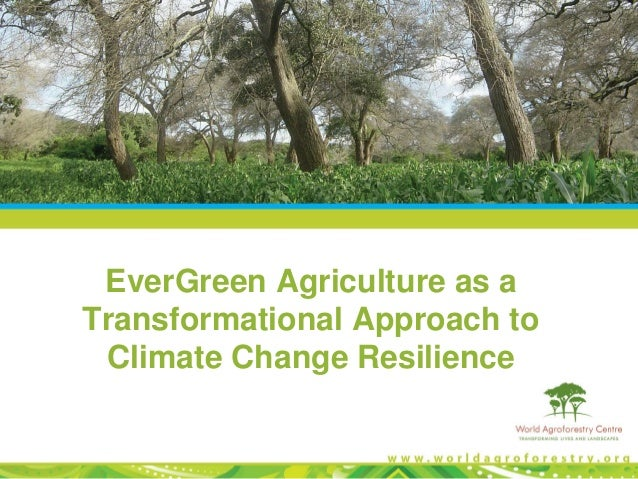 EverGreen Agriculture as a Transformational Approach to Climate Change Resilience