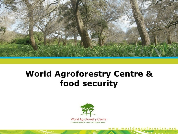 World Agroforestry Centre &       food security