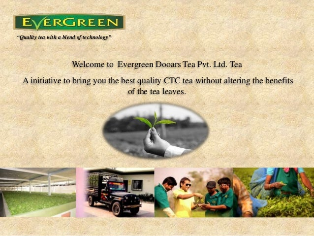 """Quality tea with a blend of technology"" Welcome to Evergreen Dooars Tea Pvt. Ltd. Tea A initiative to bring you the best ..."
