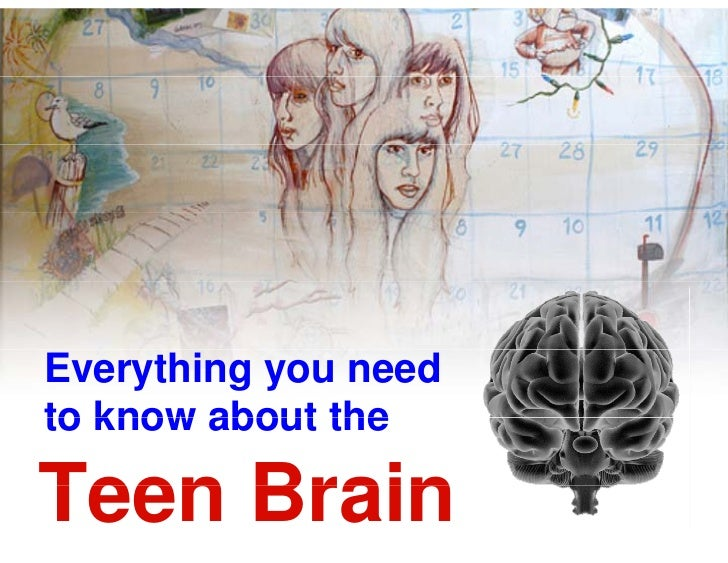 Everything you needto know about theTeen Brain