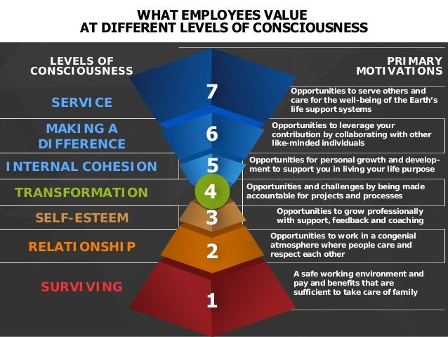 Everything I have learned about Organizational Values