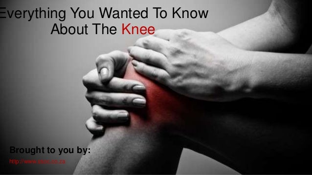 Everything You Wanted To Know About The Knee  Brought to you by: http://www.ssoc.co.za