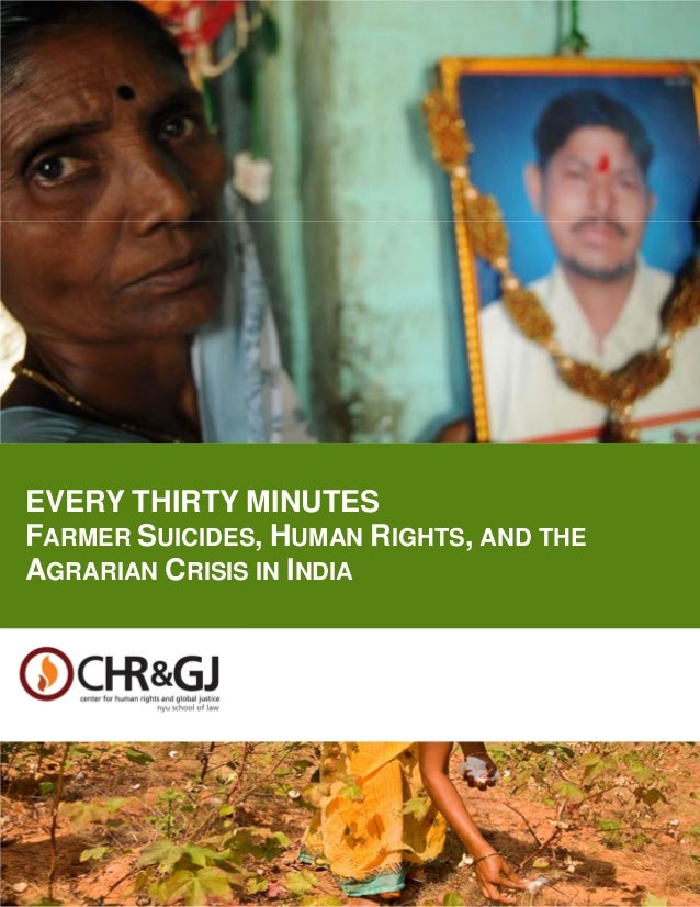 i[COVER/TITLE PAGE]EVERY THIRTY MINUTES:FARMER SUICIDES, HUMAN RIGHTS, AND THE AGRARIAN CRISIS IN INDIAEVERY THIRTY MINUTE...