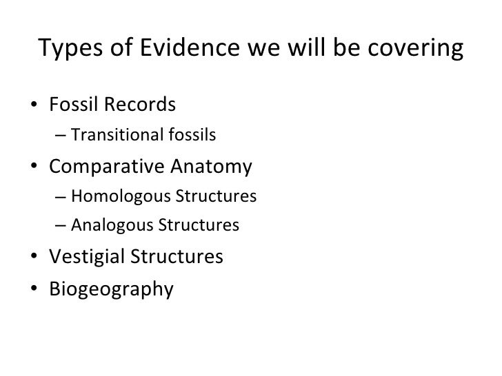 Evidence for evolution powerpoint – Comparative Anatomy Worksheet