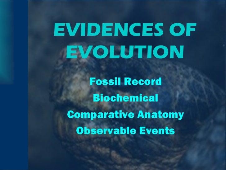 EVIDENCES OF EVOLUTION <ul><li>Fossil Record </li></ul><ul><li>Biochemical </li></ul><ul><li>Comparative Anatomy </li></ul...