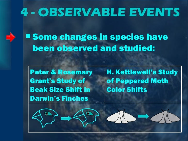 4 - OBSERVABLE EVENTS <ul><li>Some changes in species have been observed and studied: </li></ul>Peter & Rosemary Grant's S...