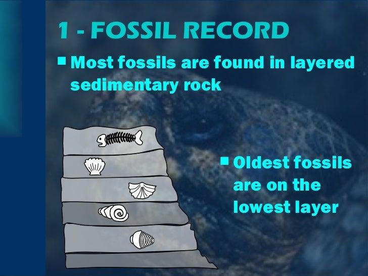 1 - FOSSIL RECORD <ul><li>Most fossils are found in layered sedimentary rock </li></ul><ul><li>Oldest fossils are on the l...
