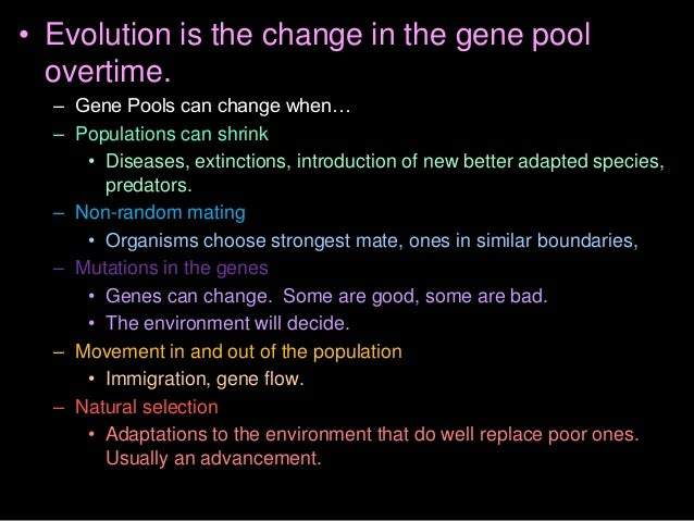 The four parts to Darwin's theories.  -  -  -  - Copyright © 2010 Ryan P. Murphy